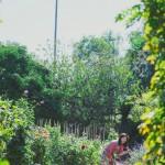 KARENWOO_CECYLIA_066